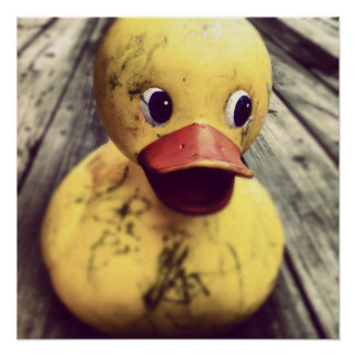 Yellow Rubber Ducky Needs a Bath! Poster