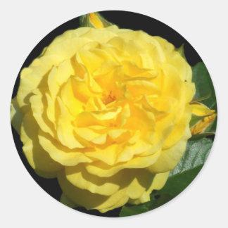 Yellow Ruffled Rose Round Sticker