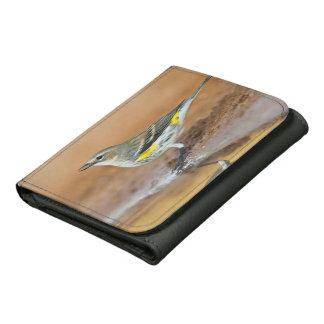 Yellow-Rumped Warbler (Dendroica Coronata) Wallets