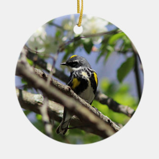 Yellow-rumped warbler in spring plumage christmas ornament