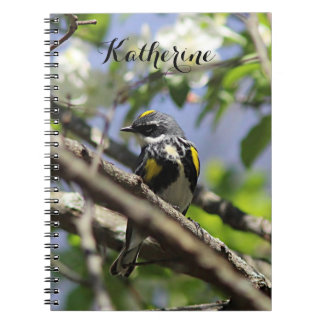 Yellow-rumped warbler in spring plumage notebook