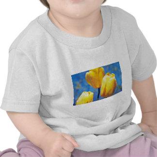 yellow 'Santiaga', Darwin Hybrid Tulips flowers Tee Shirt