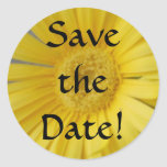 Yellow Save the Date Stickers