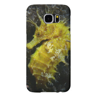 Yellow Seahorse | Hippocampus Guttulatus Samsung Galaxy S6 Cases