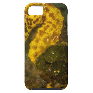 Yellow Seahorse iPhone 5 Case