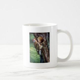 Yellow-shafted Flicker and Tree Cavity Basic White Mug