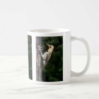 Yellow-shafted Flicker with young Coffee Mug
