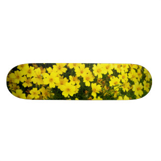 YELLow Skate Boards