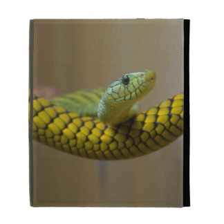 Yellow Snake iPad Folio Case