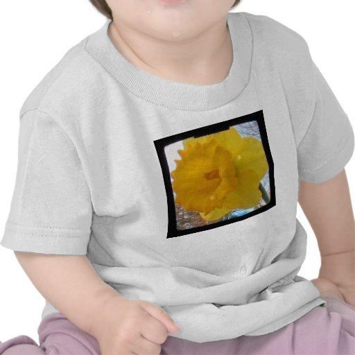 Yellow Spring Daffodil Shirts