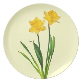 Yellow Spring Daffodils - Daffodil Template Plate