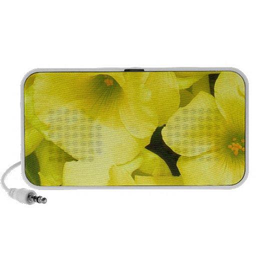 Yellow spring flowers in the garden iPhone speakers