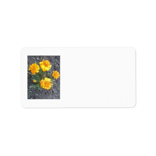 Yellow Spring Postage Avery Label