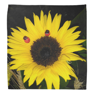 Yellow Sunflower And Two Ladybugs Do-rags