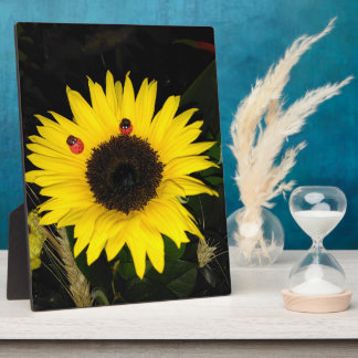 Yellow Sunflower And Two Ladybugs Plaque