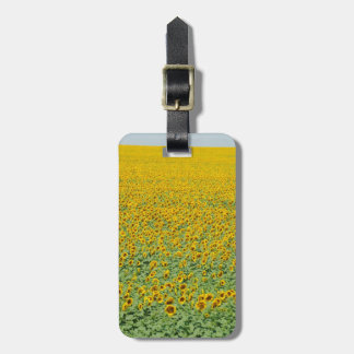 Yellow Sunflower Field Bag Tag