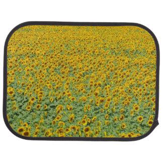 Yellow Sunflower Field Car Mat