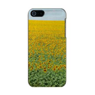 Yellow Sunflower Field Incipio Feather® Shine iPhone 5 Case
