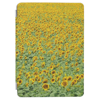 Yellow Sunflower Field iPad Air Cover