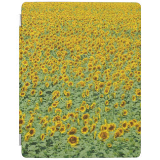 Yellow Sunflower Field iPad Cover