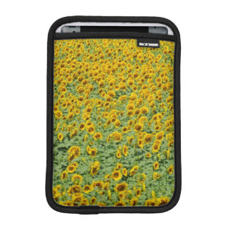 Yellow Sunflower Field iPad Mini Sleeve