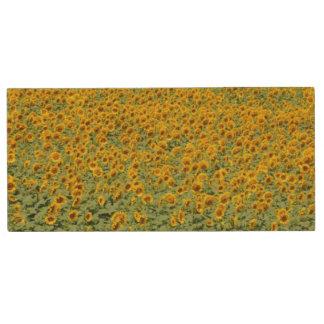 Yellow Sunflower Field Wood USB 2.0 Flash Drive