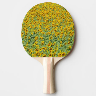 Yellow Sunflower Field Ping Pong Paddle