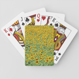 Yellow Sunflower Field Playing Cards