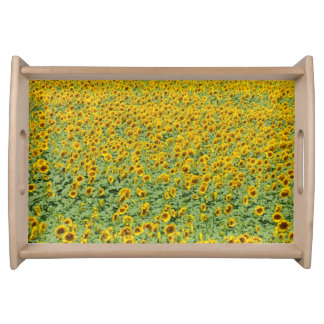 Yellow Sunflower Field Serving Tray
