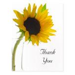 Yellow Sunflower on White Thank You Postcard