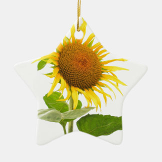 Yellow Sunflower Sun Flower Isolated Christmas Ornament