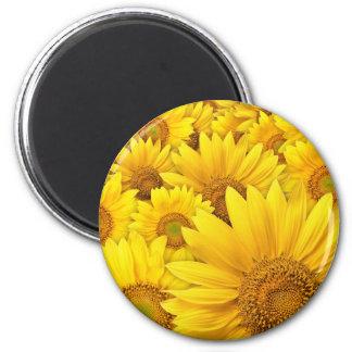 Yellow Sunflowers Magnet