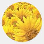 Yellow Sunflowers Sticker