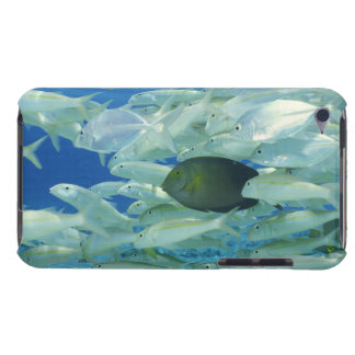 Yellow surgeon fish with yellow stripe goldfish barely there iPod cover