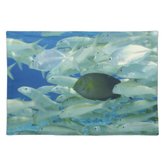 Yellow surgeon fish with yellow stripe goldfish placemat
