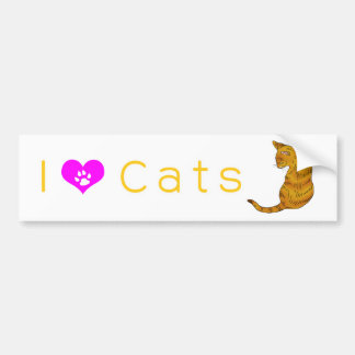 Yellow tabby cat (yellow eyes) car bumper sticker