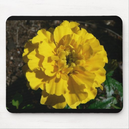 Yellow Tagetes Mouse Mat