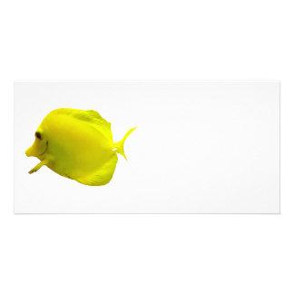Yellow Tang Custom Photo Card