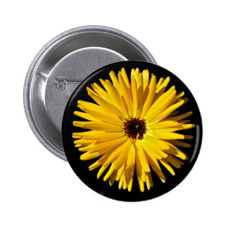 Yellow Themed, Closeup Of A Single Yellow Sunflowe 6 Cm Round Badge
