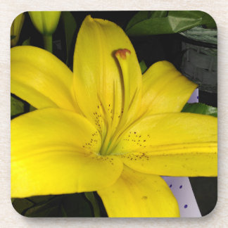 Yellow Tiger Lily Coaster