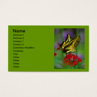 Yellow Tiger Swallowtail Butterfly Business Card
