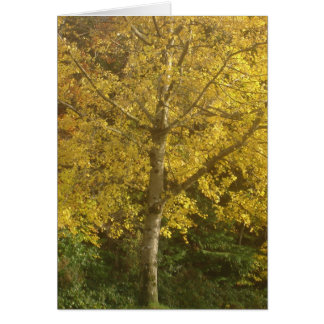 Yellow tree card