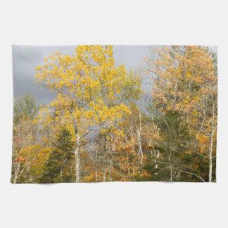 Yellow Trees in New Hampshire 7712 Tea Towel