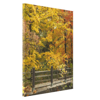 Yellow Trees Of Autumn Gallery Wrapped Canvas