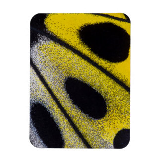 Yellow tropical butterfly close-up rectangular photo magnet