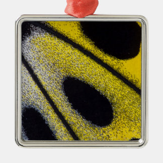 Yellow tropical butterfly close-up Silver-Colored square decoration