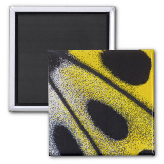 Yellow tropical butterfly close-up square magnet
