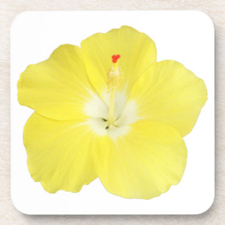 Yellow Tropical Hibiscus Flower Drink Coasters