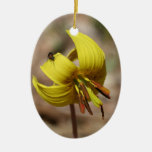 Yellow Trout Lily Floral Ornament