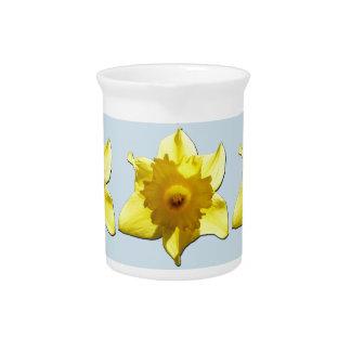 Yellow Trumpet Daffodil 1.2.b Pitcher